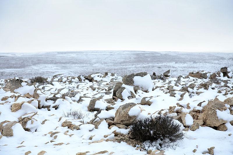Снег в пустыне. Фото: Оfer Аvioz