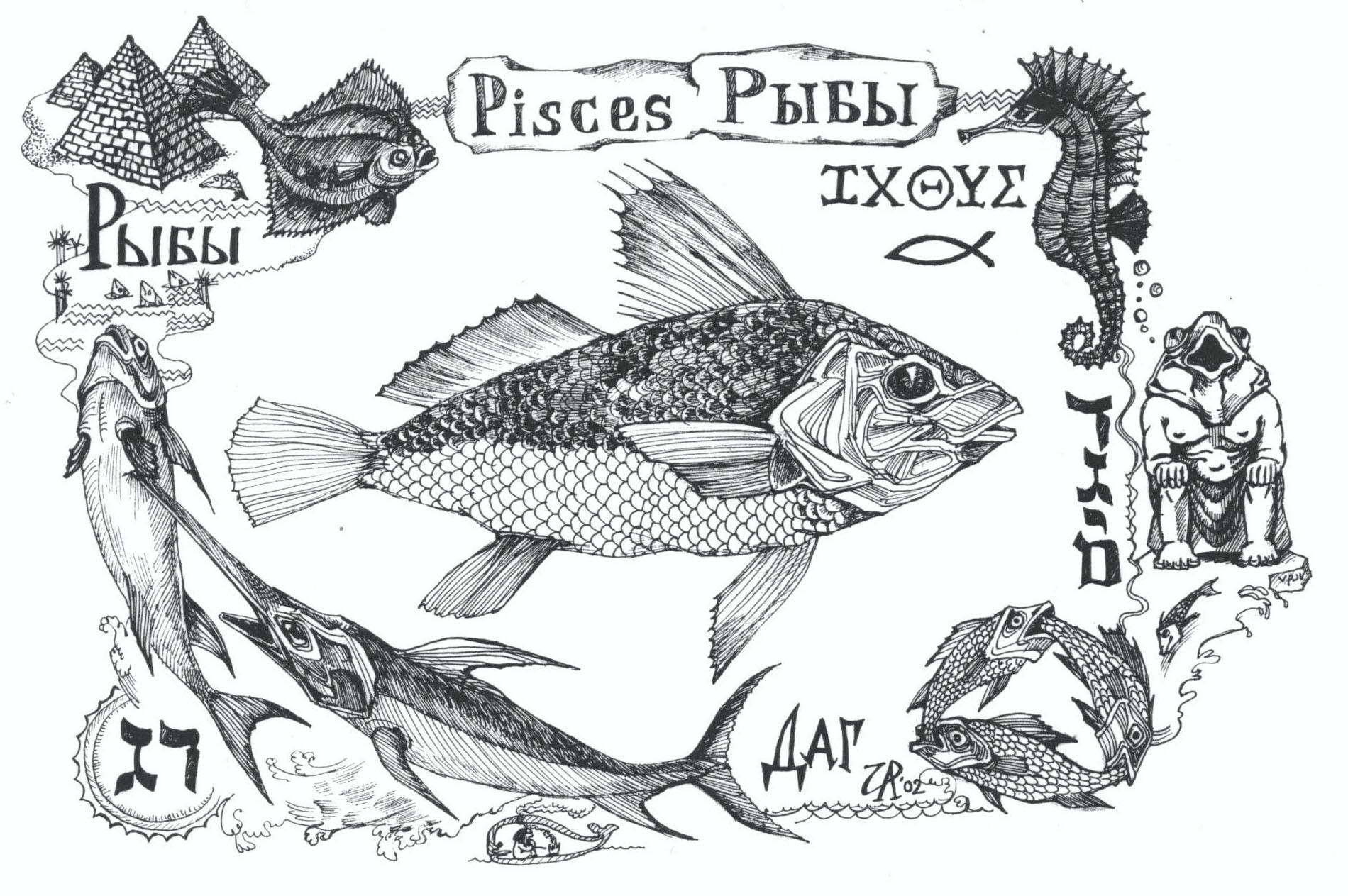 Даг– рыба. Рис. Иры Голуб