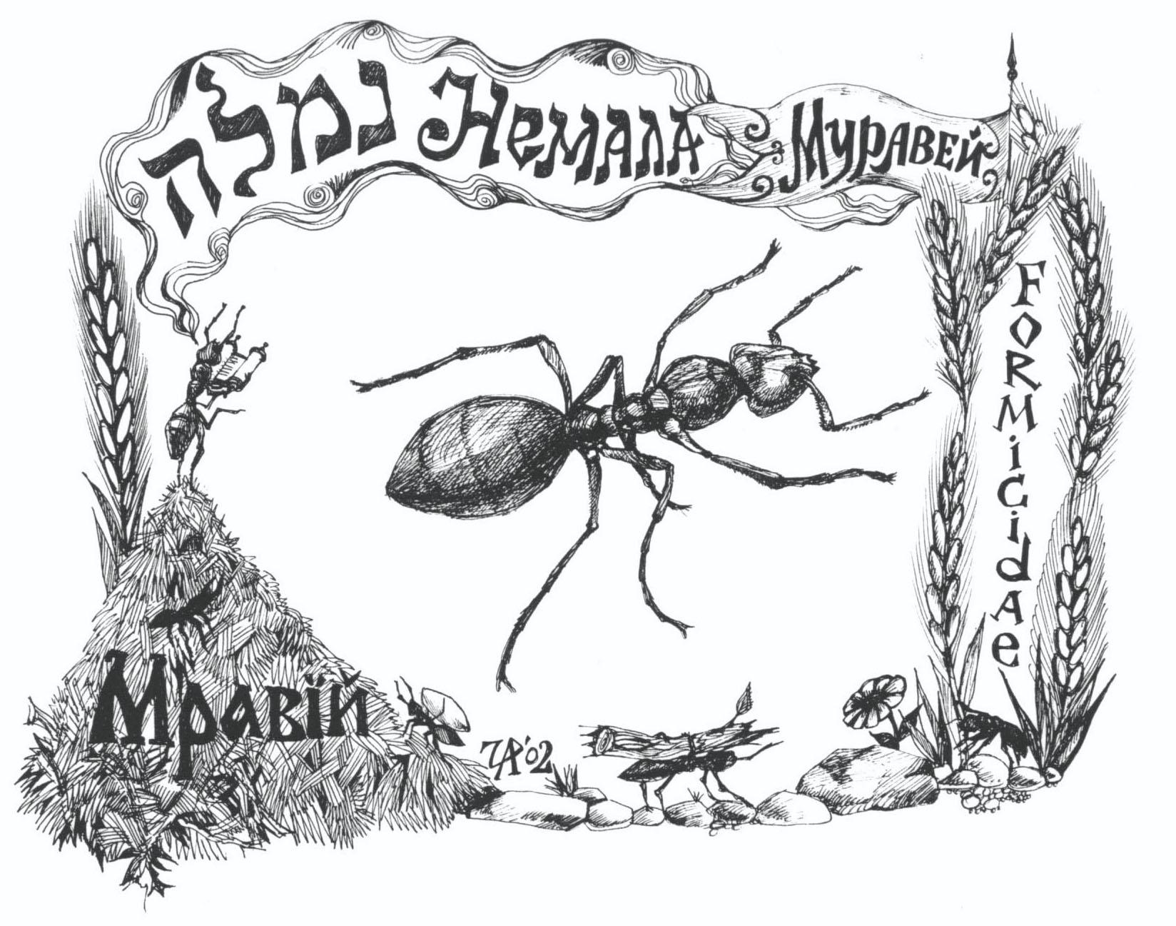 Немала - муравей. Рис. Иры Голуб
