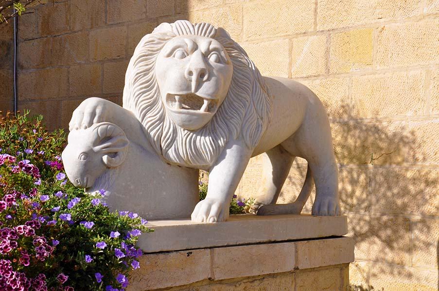 gali-dana singer-lions (1)