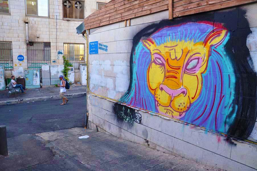 gali-dana singer-lions (21)