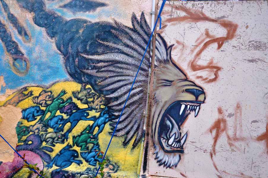 gali-dana singer-lions (29)