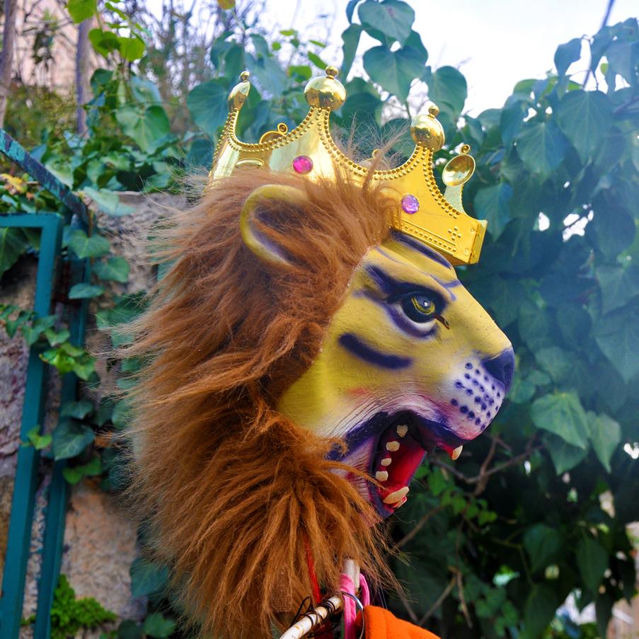 gali-dana singer-lions (41)