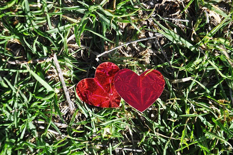 Hearts (21)