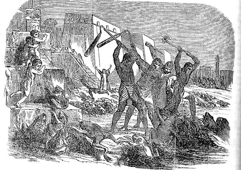 Вторая казнь египетская - жабы. Иллюстрация из библейской энциклопедии архимандрита Никифора, 1891