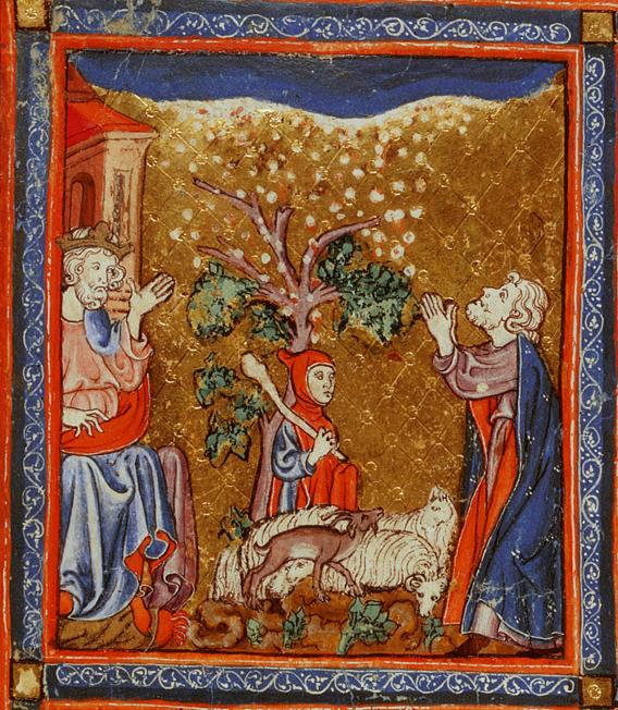 Седьмая казнь: град. Иллюстрация к Аггаде, XIV в.