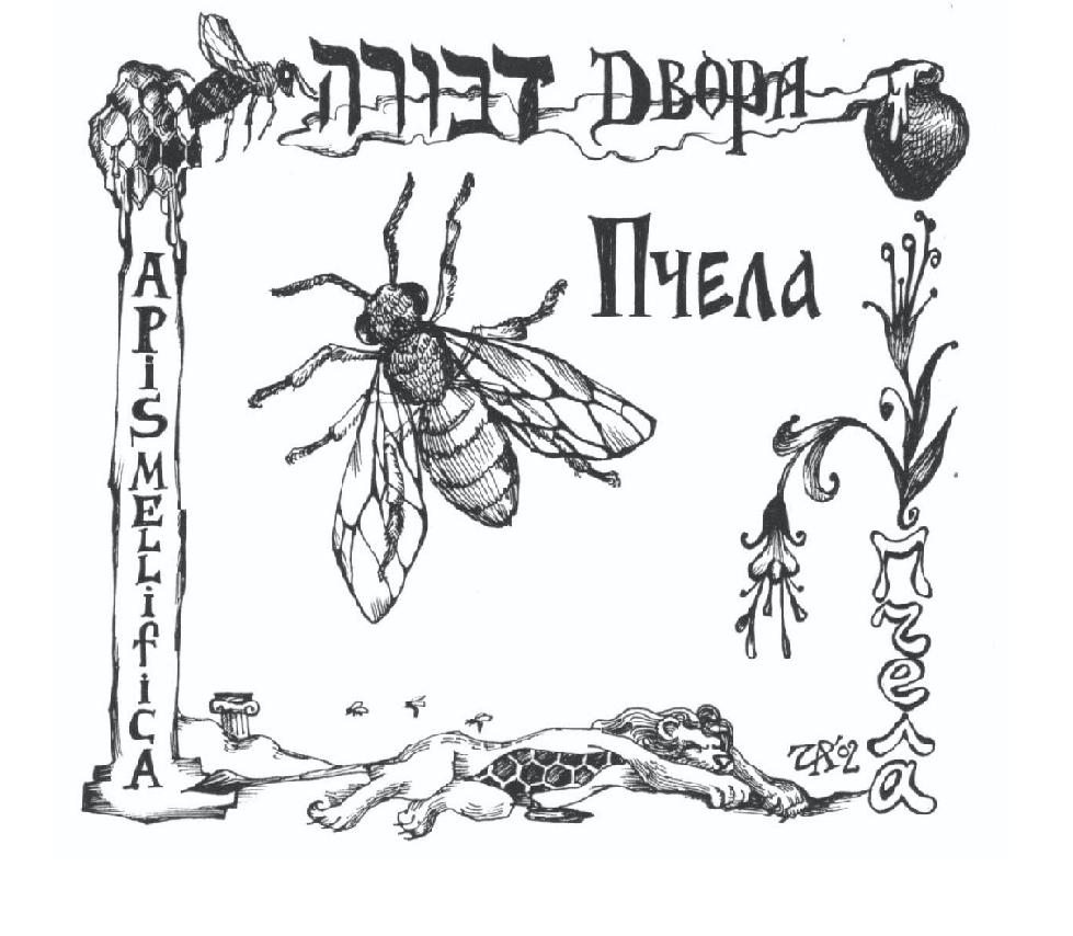 Двора-пчела. Рис. Иры Голуб