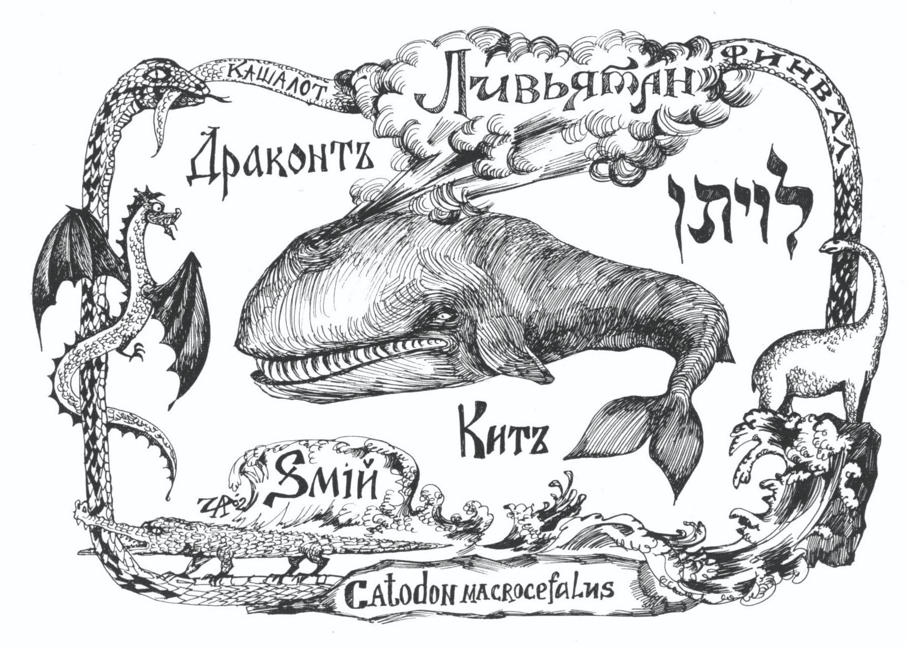Ливйатан - кашалот или сельдяной кит. Рис. Иры Голуб