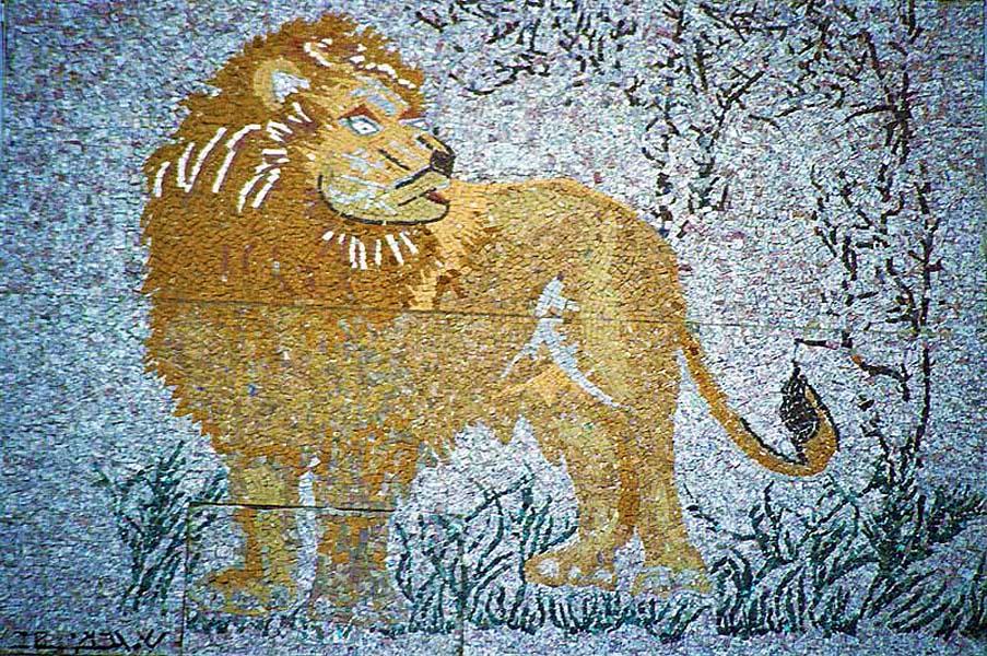gali-dana singer-lions (11)