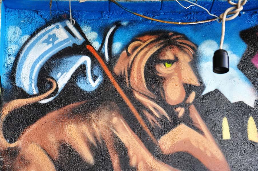 gali-dana singer-lions (3)