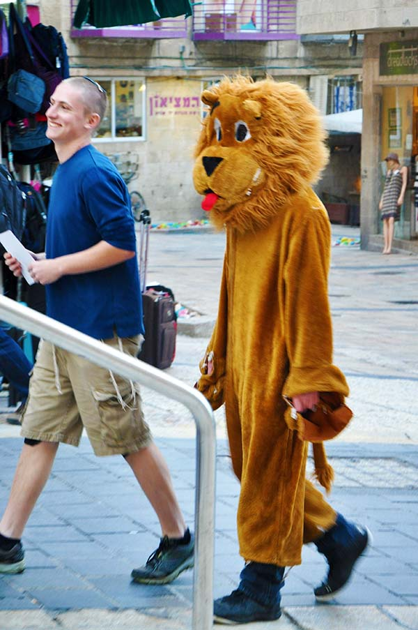 gali-dana singer-lions (33)