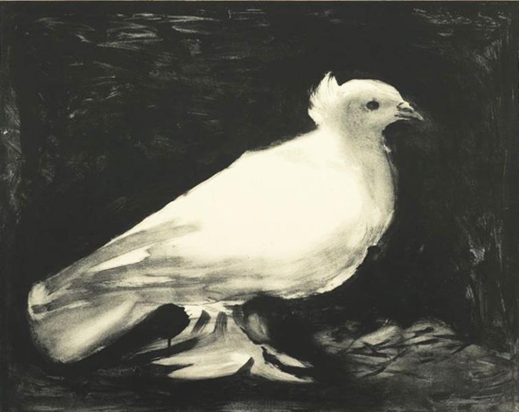 Пабло Пикассо. Голубь (Голубь мира). 1949